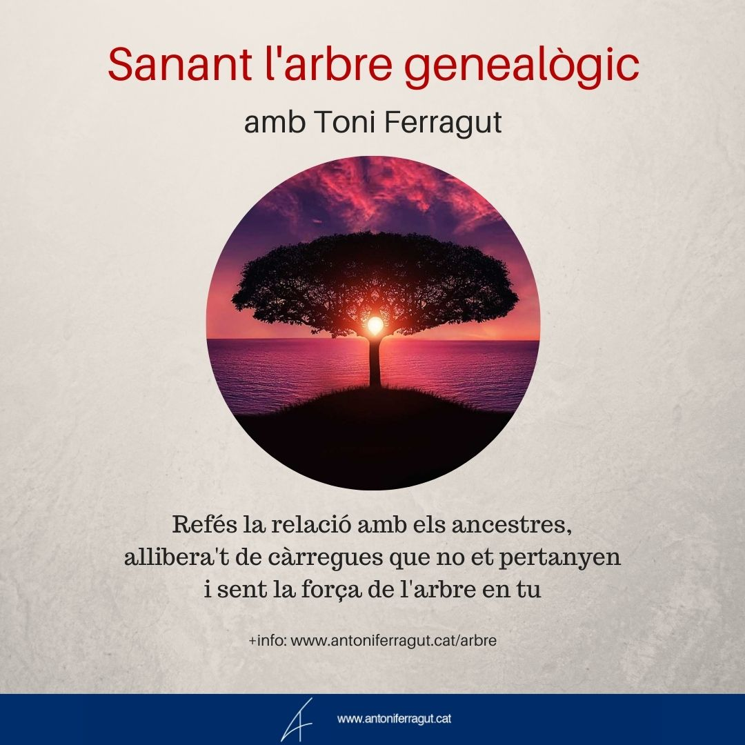 Sanant l'arbre genealògic